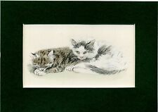 Lucy Dawson ~ Cats ~ Hand Coloured Print. Genuine Vintage 1946