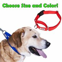 GoGo® Comfy Martingale Dog Collar