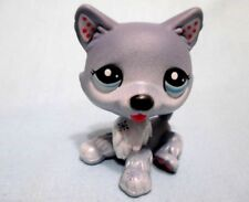 Littlest Pet Shop Blythe Husky 1617 Puppy Dog Authentic Lps