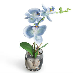 MyGift Blue Synthetic Silk Faux Phalaenopsis Orchid in Clear Glass Flower Vase