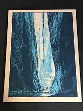DAN MCCARTHY - The Narrows SCREENPRINT ON WOOD - RARE SIGNED walker cave art