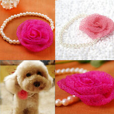 Pet Puppy Cat Dog Flower Pearl Pendant Collar Princess Necklace