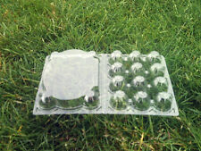 Quail Egg Boxes Trays Flat Top Clear Plastic Full Case Approx 840 in Total