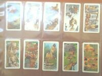 1974 Brooke Bond Tea INDIANS OF CANADA  Indian  tribe Trading set  48 cards