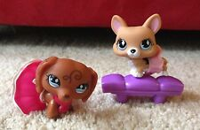 Littlest Pet Shop Brown Dachshund Swirl & Corgi Dog #640 #639 Diamond Blue Eyes