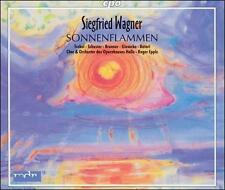 Siegfried Wagner: Sonnenflammen, New Music