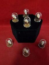 Sale!!  Taxidermy bat skull-Pipistrellus-glass dome display-bones/head/skeleton