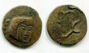 (17544)Chach, Ruler Nirt, 7-8 Ct AD