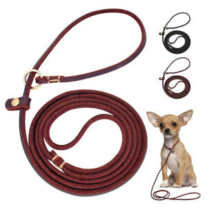Brown Black Leather Pet Leash Collar Training Slip Rope for Small Puppy Dogs S M