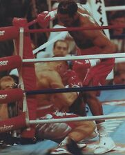 LENNOX LEWIS vs ANDREW GOLOTA 8X10 PHOTO BOXING PICTURE LEWIS DOWNS GOLOTA