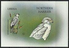 Liberia Kornweihe Circus Cyaneus Vogel Greifvogel Geschnitten Ungezahnt ** 1999