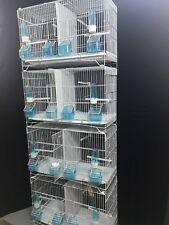 4 Set di 4 x DOPPIO CANARINO budgies ZEBRA allevamento in gabbie 4x (Set di 4 GABBIE)