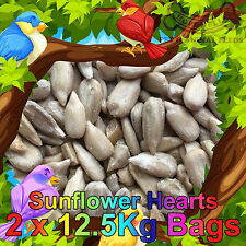 25KG Sunflower Hearts Bakery Grade Dehulled Kernels for Wild Bird Food 2x12.55Kg