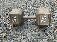 75lb Hex Dumbbell Lennox Lewis Fight Camp Cast Iron - Used - Great Condition