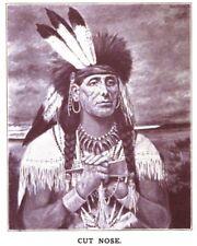 Native American Indian Sioux valiente Corte nariz de Minnesota 1862 6x5 pulgadas impresión
