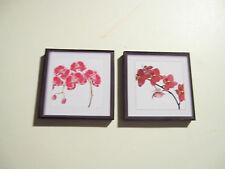 2 DOLLS HOUSE miniatura Stampe Botaniche A1