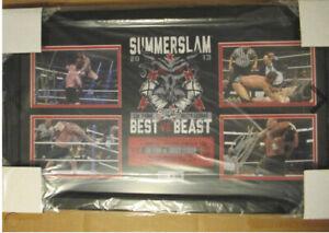 WWE Summerslam Signed Plaque CM Punk Brock Lesnar Heyman Beast Versus Best #500