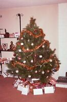 CHRISTMAS TREE Vintage 35mm FOUND SLIDE Transparency PRESENTS Photo 02 T 4 R