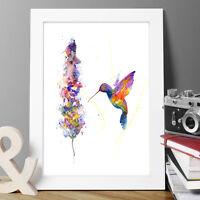 HUMMING BIRD ORIGINAL WATERCOLOUR PRINT NEW SIGNED POP ART ,ABSTRACT FLORAL ART