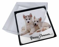 4x Husky Puppies 'Yours Forever' Picture Table Coasters Set in Gift Bo, AD-H60yC