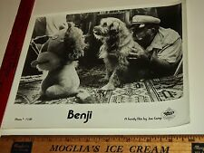 Rare Original VTG Joe Camp Dog Benji Higgins Peter Breck Tom Lester Movie Photo