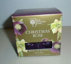 Royal Horticultural Society Christmas Rose Scented Tea Light Candles RHS