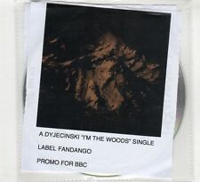 (HD198) A Dyjecinski, I'm The Woods - 2015 DJ CD