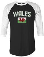 Threadrock Wales Flag Unisex Raglan T-shirt United Kingdom Welsh Soccer