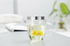 Glass Cup Mug with Glass Filter Infuser & S/S Lid to Make Tea and Coffee 500ml