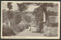 Postcard Guernsey Channel Islands a Country Road In by Raphael Tuck early view