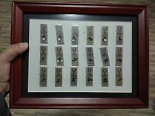 2008 BEIJING OLYMPIC USA PARALYMPIC TEAM SPORT PICTOGRAMS PIN SET WITH FRAME