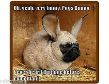 Funny Dog Pug Bunny Refrigerator / Tool Box Magnet