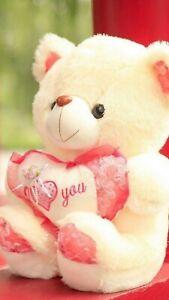 Teddy bear,Special Heart Stuffed Soft Plush Toy Kids Cute Bear