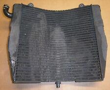Wasser - Kühler Suzuki RF600 (1534434)
