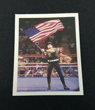 Merlin WWF 1992 235 Sgt. Slaughter Wrestling WWE 92 Topps Panini Sticker