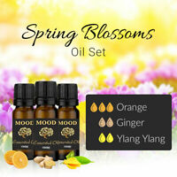 Spring Blossoms Essential Oil Set Orange Ginger Ylang Ylang 10ml Aromatherapy