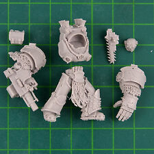Death Guard Grave Wardens Terminator C Marine Legion Forge World 0779