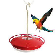 UK_ 12 Ounce Hummingbird Feeder Flower Bird Water Food Dispenser Garden Hanging