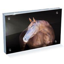 "Beautiful Chestnut Horse Photo Block 6 x 4"" - Desk Art Office Gift #12507"