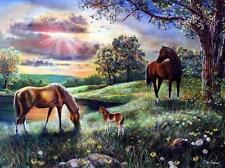 """Jim Hansel """"Spirit"""" Horse Colt  Print  16"""" x 12"""""""