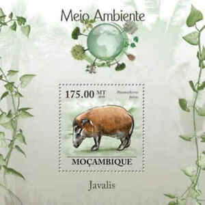 Mozambique - Boars - Stamp s/s - 13A-346