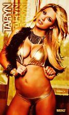 Taryn Terrell Wall Banner TNA Impact Wrestling