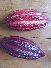 Cabosse de Cacao - Theobroma cacao