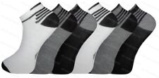 Mens Sport Trainer Gym Ankle Socks Grey Assorted 3 6 9 12 Pairs 6 Pairs 3649