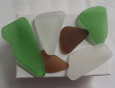 6 pretty Surf Frosted Chesapeake Bay Seaglass pieces - crafts jewelry collecting