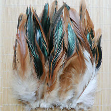 50 Pcs NATURAL ROOSTER Feathers, Plumage 3-6