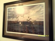 Wild Wings Signed and numbered Framed Print