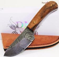 Genuine Damascus Wide Bellied Blade Full Tang Walnut Hunting Skinning Knife