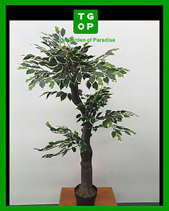 150cm Height Artificial Fake Plant Ficus Tree With Pot Mixed Green Leaves
