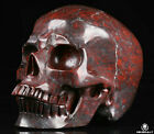 "Huge 5.0"" Chicken Bloodstone Carved Crystal Skull, Realistic, Crystal Healing"